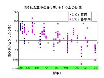 ほうれん草中の放射性ヨウ素、セシウムの比率