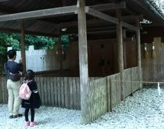 写真2 外宮別宮風宮の玉垣に2束ずつ掛けられた懸税(2014年10月16日)