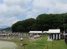 写真2 伊雑宮御料田での御田植神事、背後の森は伊雑宮(2015年6月24日)