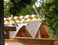写真3 外宮新御敷地前の参道から見た正殿屋根上の鰹木(2014年10月4日)