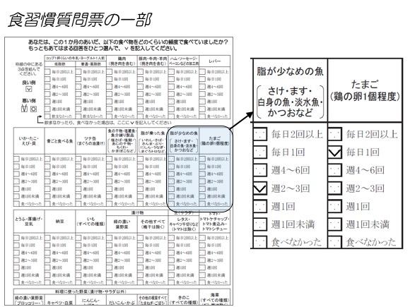 図1. 食習慣質問票の一部:2冊の質問票は、このように該当箇所にチェックマークを入れたり、数値を入力したりする構造になっていました。
