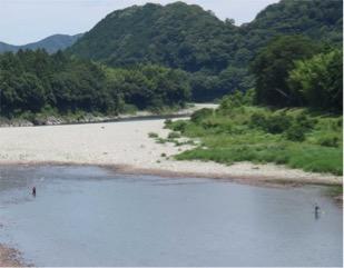 写真2 伊勢から瀧原宮へ向かう途中の宮川でのアユの友釣り(2016年7月5日)