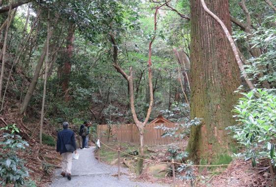 写真1 外宮所管社の下御井神社(2016年10月23日)