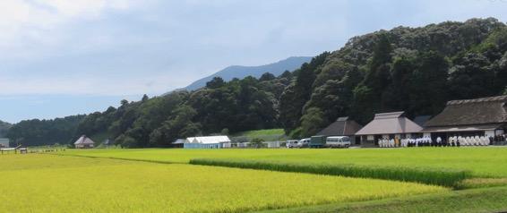 写真1 神宮神田・抜穂祭における事務所前での参列者のお祓い(2016年9月3日)