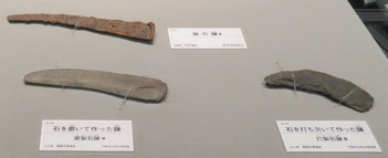 写真7 弥生時代の鉄鎌(左上)、磨製(左下)と打製(右)の石鎌(大阪府立弥生文化博物館,2016年11月9日)