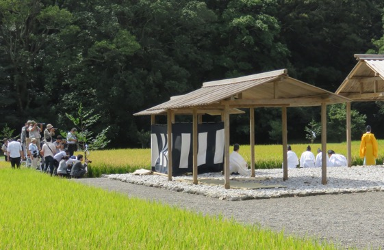 写真1 神宮神田の抜穂祭祭場での白と黒の鯨幕(中央)および報道陣(2016年9月3日)